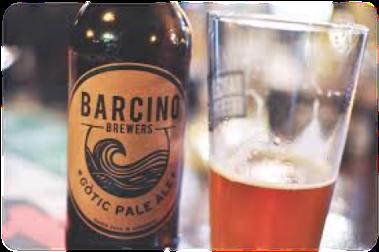 logo barcino